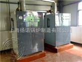 126KW电蒸汽锅炉煮饭、供暖、热水综合配套
