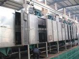 DW-新馬干燥加工定制蘋果片帶式干燥機