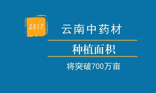 2017云南药材种植面积将突破700万亩